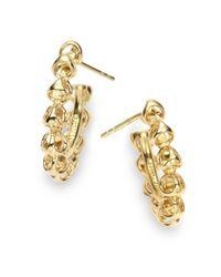 Di Modolo - Metallic Triadra Small Hoop Earringsyellow Gold - Lyst