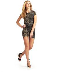 Torn By Ronny Kobo | Multicolor Kaitlyn Cheetah Dress | Lyst