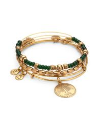 ALEX AND ANI | Green Ivy Bangle Set | Lyst
