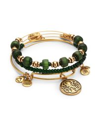 ALEX AND ANI - Green Heather Bangle Set - Lyst