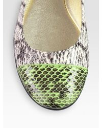 Jimmy Choo - Multicolor Whirl Snakeskin Captoe Ballet Flats - Lyst