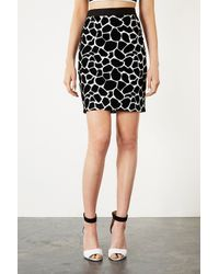 TOPSHOP - Black Flocked Giraffe Print Pencil Skirt - Lyst