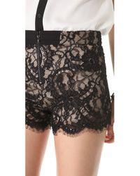Alice + Olivia - Black Alice Olivia High Waisted Lace Shorts - Lyst