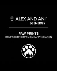 ALEX AND ANI - Metallic Paw Print Expandable Wire Bangle, Charity By Design Collection - Lyst