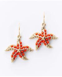 Ann Taylor - Orange Starfish Earrings - Lyst