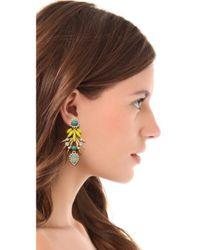 Elizabeth Cole | Yellow Strieker Earrings | Lyst