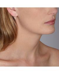 Astley Clarke | Pink Rose Gold Falling Leaf Chandelier Earrings | Lyst