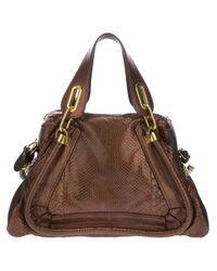 Chloé   Brown Paraty Python Skin Shoulder Bag   Lyst