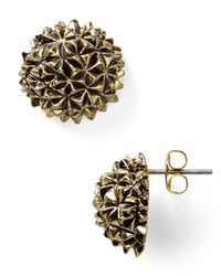 House of Harlow 1960 - Metallic Mini Crater Stud Earrings - Lyst