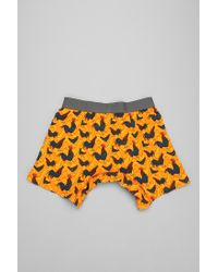 Urban Outfitters - Orange Crazy Rooster Boxer Brief for Men - Lyst