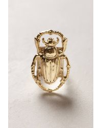 Anthropologie - Metallic Golden Scarab Ring - Lyst