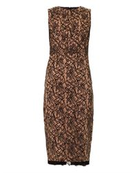 Camilla & Marc   Black Lace Front Fitted Dress   Lyst