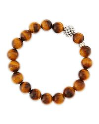 Lagos | Brown 10mm Caviarball Tigers Eye Beaded Stretch Bracelet | Lyst