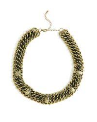 Nasty Gal - Metallic Beetle Necklace - Lyst