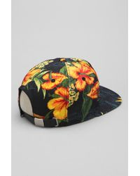 Urban Outfitters | Black 10deep Gold Standard Strapback Hat for Men | Lyst