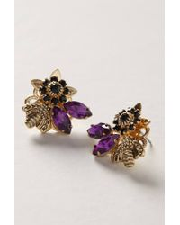 Anthropologie | Purple Honeybee Earrings | Lyst