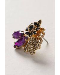 Anthropologie | Purple Honeybee Earrings | Lyst