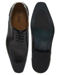 ALDO - Black Roary Wingcap Shoes for Men - Lyst