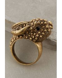 Alkemie | Metallic Roaming Rabbit Ring | Lyst