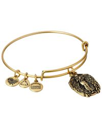 ALEX AND ANI | Metallic Guardian Of Knowledge Charm Bangle | Lyst