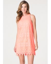 Bebe | Orange Lace Shift Dress | Lyst