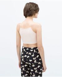Zara | Pink Crop Top | Lyst