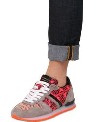 Serafini - Pink 20mm Leather Python Print Sneakers - Lyst