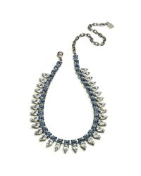 DANNIJO - Blue Aspen Necklace - Lyst