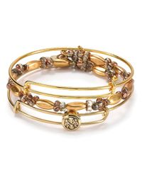 ALEX AND ANI - Metallic Exclusive Path Of Life Bracelets Set Of 3 - Lyst
