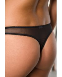 Yes Master - Green Dragon Thong - Lyst