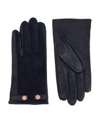 Ted Baker | Blue Suede Stud Detail Gloves | Lyst