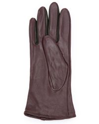 SOIA & KYO | Purple Brienne Gloves - Merlot | Lyst