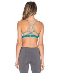 Alo Yoga   Blue Westerly Bra   Lyst