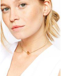 ASOS - Metallic Ditzy Rose Choker Necklace - Lyst