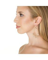 Asha | Metallic Calista Earrings | Lyst
