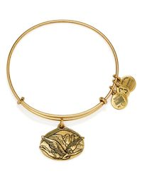 ALEX AND ANI | Gold Guardian Of Freedom Expandable Wire Bracelet | Lyst