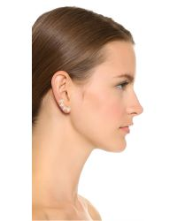 Noir Jewelry - Metallic Joslyn Ear Crawlers - Clear/gold - Lyst