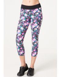 Bebe Pop Floral Capri Pants | Lyst