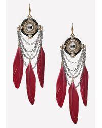 Bebe - Metallic Chain & Feather Earrings - Lyst