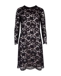 Ted Baker   Black Ameera Lace Sheath Dress   Lyst