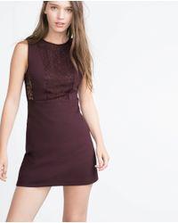 Zara | Purple Lace Dress | Lyst