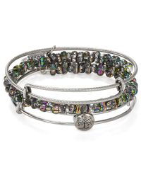 ALEX AND ANI - Metallic Exclusive Tree Of Life Bangles Set Of 3 - Lyst