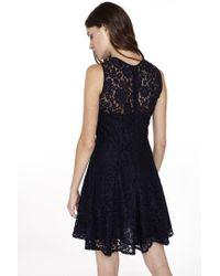 Liu Jo | Blue Lace Dress | Lyst