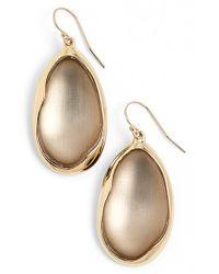 Alexis Bittar - Gray 'lucite - Liquid Metal' Oval Drop Earrings - Lyst