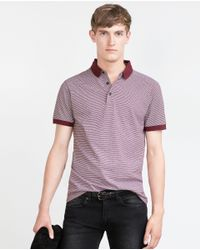 Zara | Purple Jacquard Polo Shirt for Men | Lyst