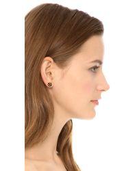 Tory Burch - Metallic Logo Flower Resin Stud Earrings - Tortoise/Shiny Gold - Lyst