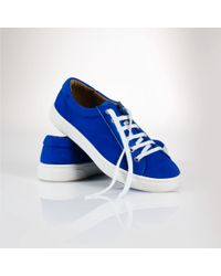 Polo Ralph Lauren | Blue Drew Lace-up Sneaker | Lyst