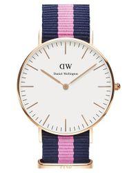 Daniel Wellington Metallic 'classic Winchester' Round Nato Strap Watch