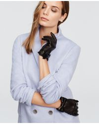 Ann Taylor - Black Leather Bow Gloves - Lyst