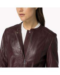 Tommy Hilfiger   Purple Leather Biker Jacket   Lyst